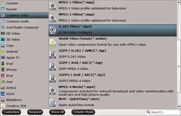 external travel drive video format