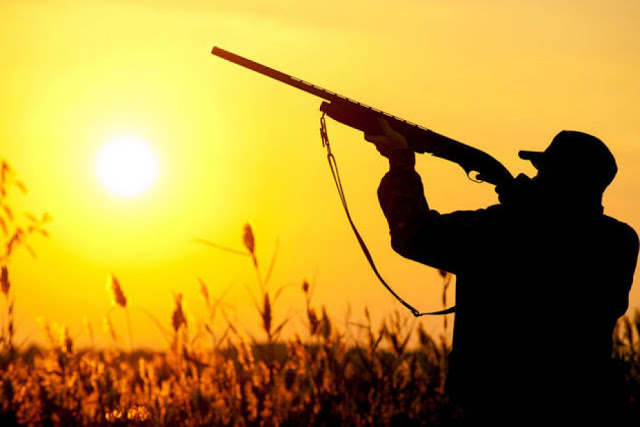 Μέχρι την οριστική απαγόρευση του κυνηγιού, τουλάχιστον μαζέψτε λίγο τους ανεγκέφαλους με το δίκανο
