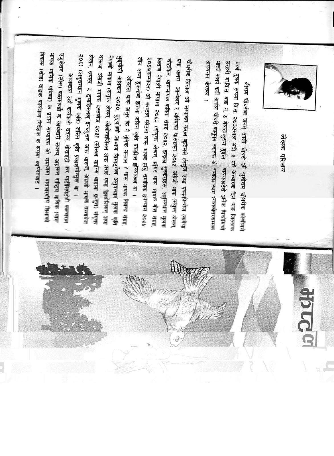 universal declaration human rights essays
