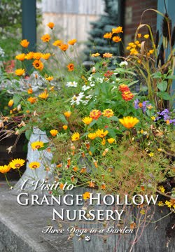 A Visit to Grange Hollow Nursery