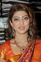 Pranitha in Lovely Kanjiwaram Saree ((23)000 032.jpg