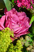 Délicatesse des fleurs d'été