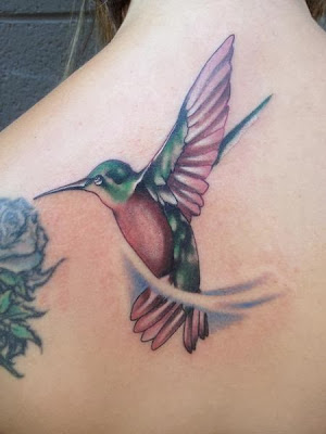 Green and Pink Humming Bird Tattoo
