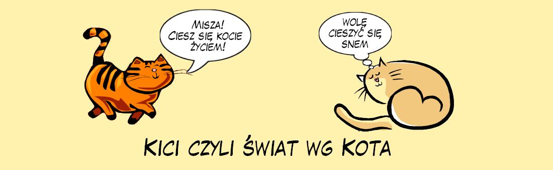 KiCi czyli świat wg Kota