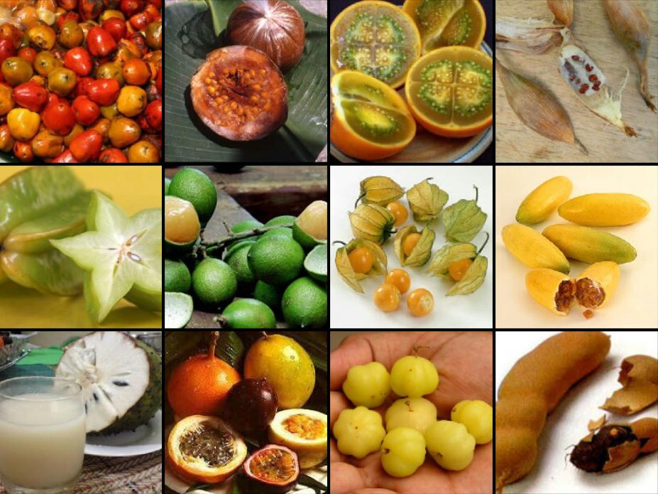 Frutas tropicales colombia deja huella desenfrename - Frutas tropicales y exoticas ...