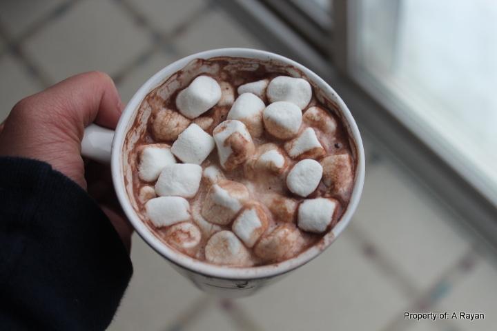 Does Hot Chocolate Make You Sleep