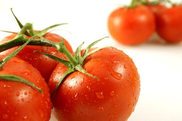 Manfaat Tomat Bagi Tubuh