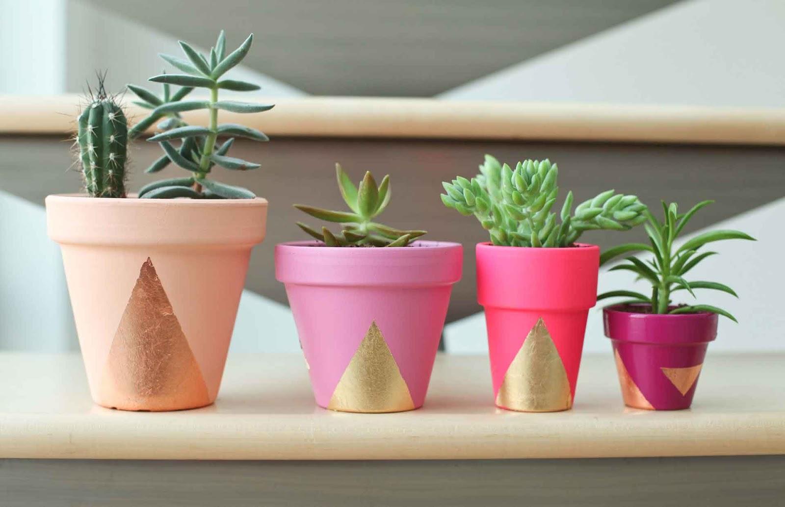 Plant Zen - cover