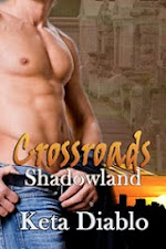 Shadowland, Book 4