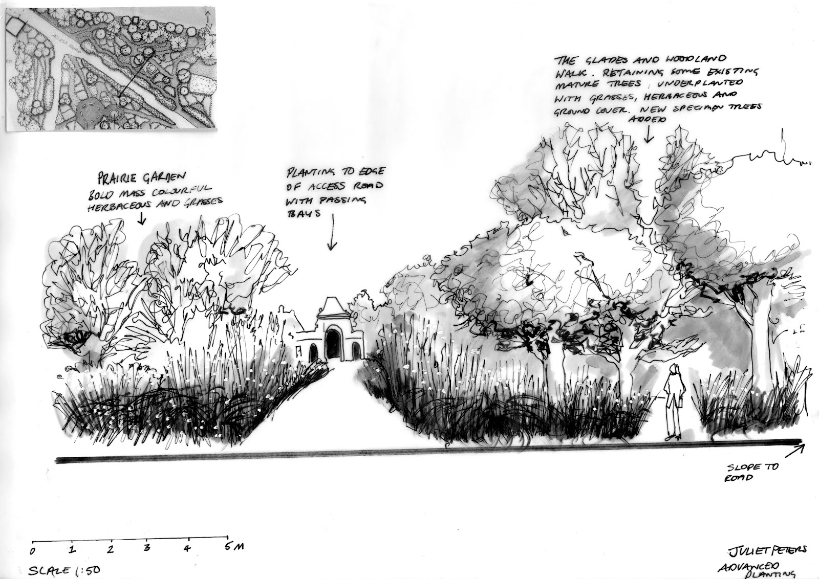 Berrybower landscape advanced planting design for Advanced landscape design