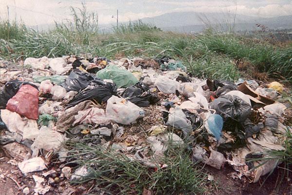 Contaminaci n del suelo la contaminaci n del suelo for Informacion sobre el suelo