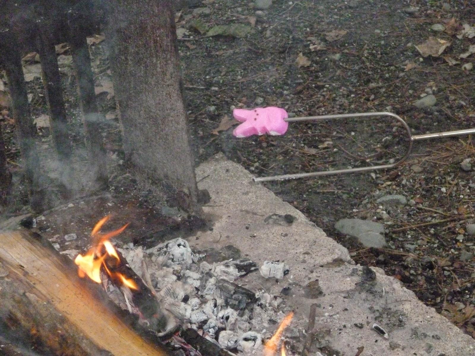 Ava Quinn, Contemporary romance, marshmallow Peeps, contemporary western romance, funny blog, humor blog, romance author, romance books