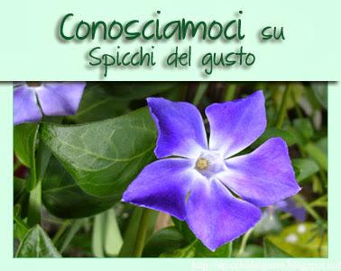 http://spicchidelgusto.blogspot.com/2013/11/4-edizione-conosciamoci-spicchi-del-gusto.html