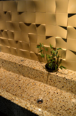 Terrazzo Sink and Polished Concrete Wall, DEX Industries