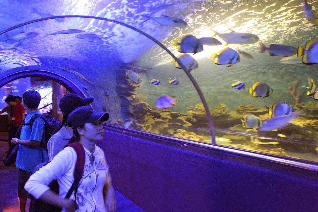 Vietnam Tours: Nha Trang?s Vinpearl Land Luxury Resort - Vietnam ...
