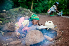SEGURIDAD ALIMENTARIALa lucha contra la subnutrición
