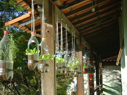 jardim vertical latas:Novos Rurais: Horta Vertical