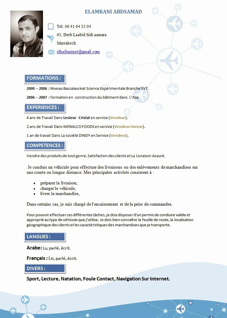 Curriculum vitae piloto avion - essay writers uk