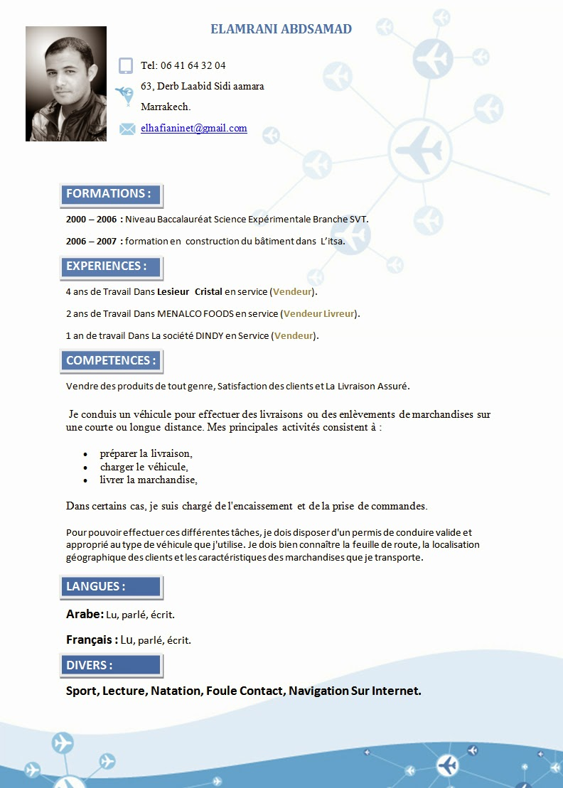 comment faire un cv  exemple cv original style avion