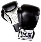 Everlast Boxing Gloves - On Sale