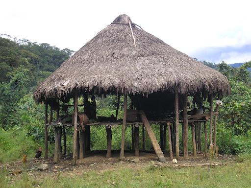 Los embera katio una cultura por conocer - Murcielago en casa significado ...