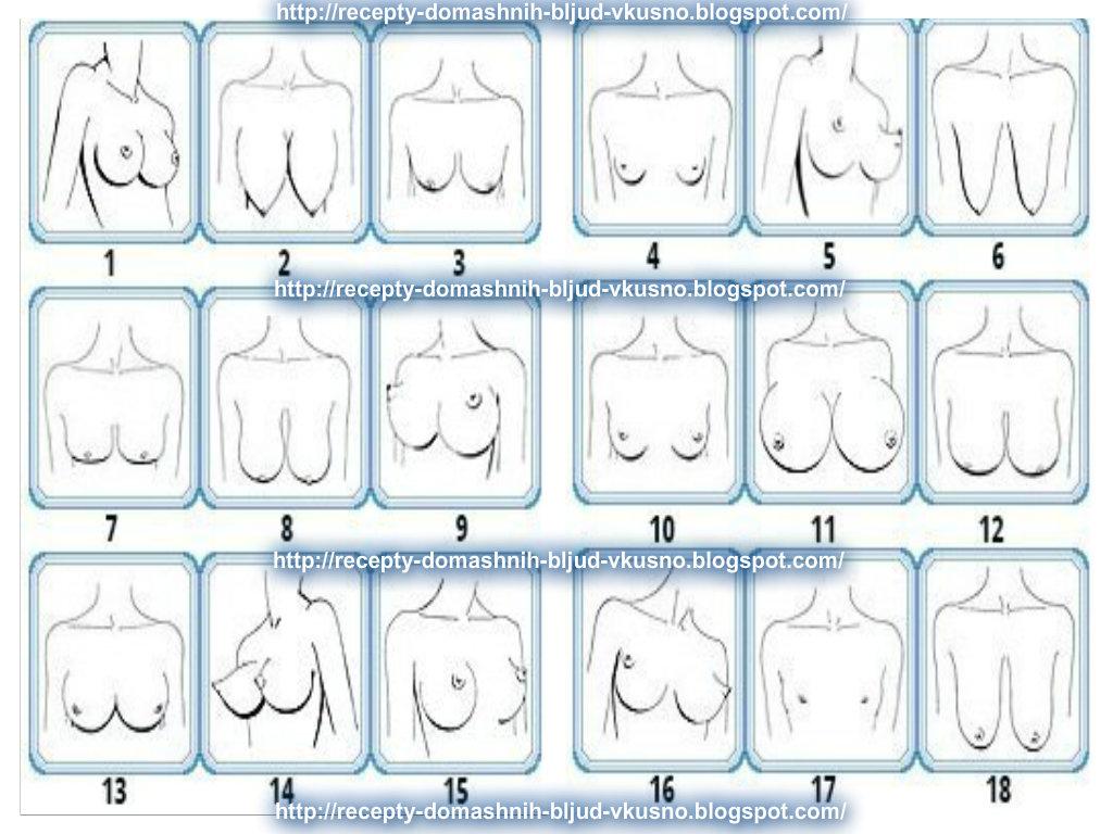Форма груди девушек
