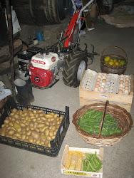 Algúns dos productos ecolóxicos producidos
