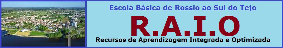 R.A.I.O. Recursos de Aprendizagem Integrada e Otimizada