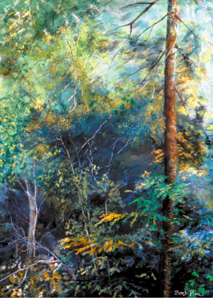 Barb Pinc landscape