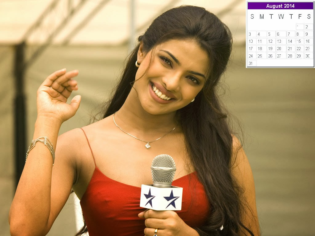 happy new year 2014: priyanka chopra calendar 2014: priyanka chopra