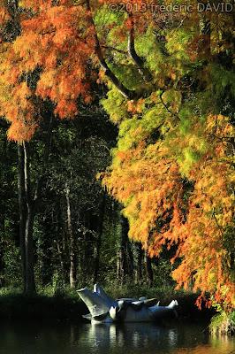 insolite automne art Chamarande Essonne