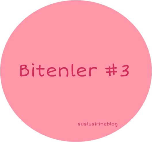 bitenler blog 2015