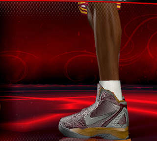 Nike Zoom Hyperdunk 2011 NBA 2K12 Edition
