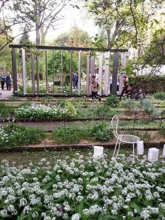 Fuori salone il giardino botanico di brera fourfancy for Giardino botanico milano