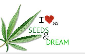 Buy Medical Strain Seeds