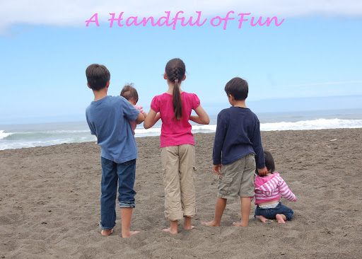 A Handful of Fun