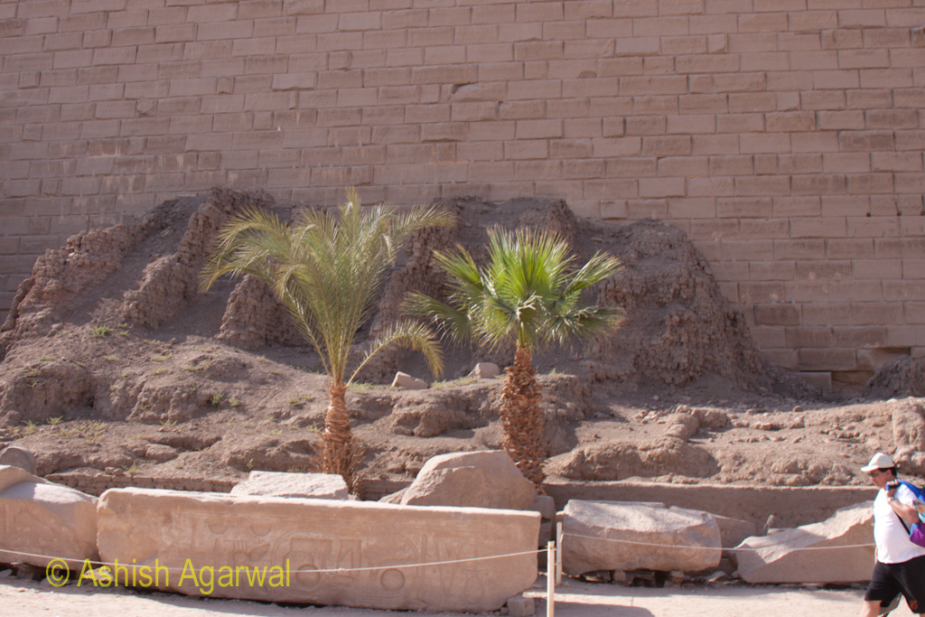 Small trees and some amount of rubble inside the Karnak temple in Luxor