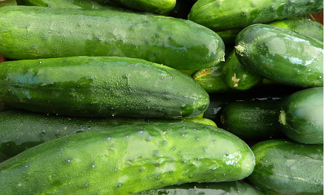 Check What Eating Cucumbers Daily Can Do to You