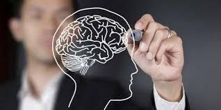 saraf otak