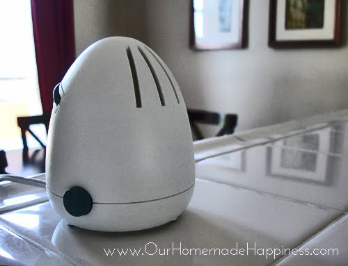Room Air Fresheners 3 Simple Homemade Recipes Party