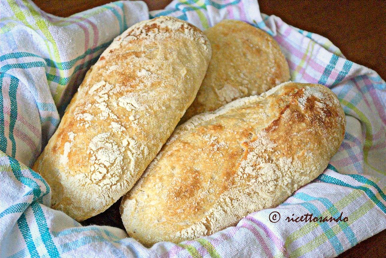 Ciabattine con lievito madre ricetta di pane a base di farina di grano tenero