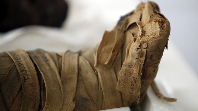 Philadelphia museum to reveal mystery behind mummy conservation