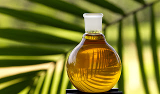 Malaysia reserves palm oil export duty unchanged