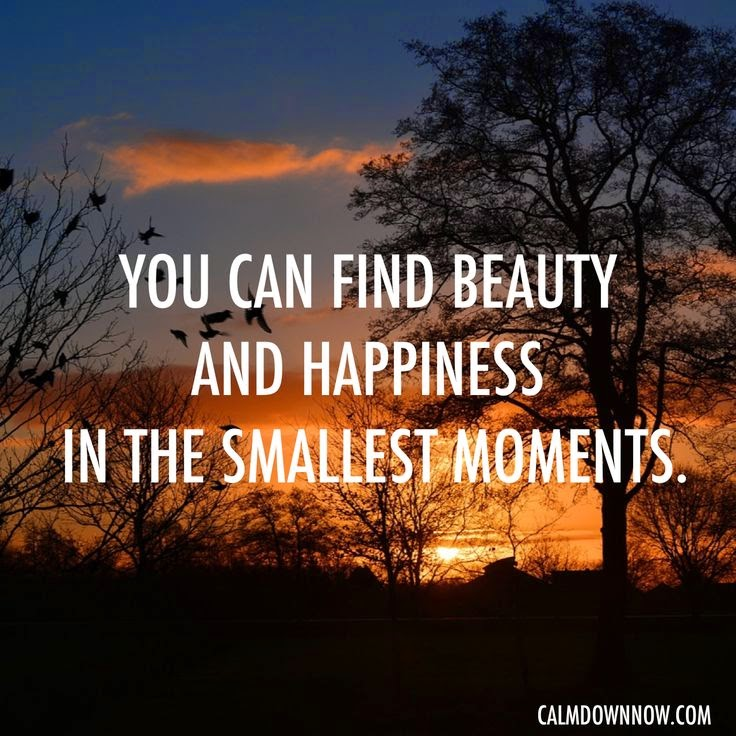 """You can find beauty and happiness in the smallest moments."" Picture of a sunset. calmdownnow.com"
