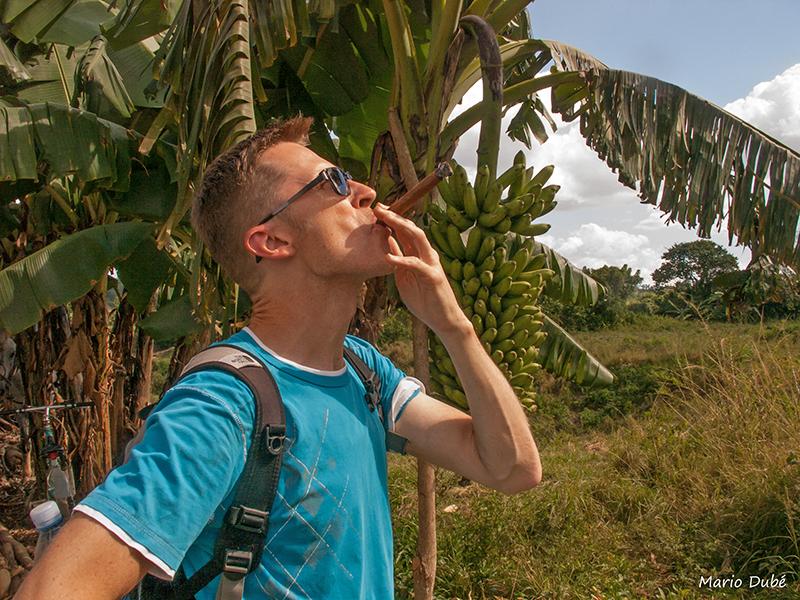 Moi qui fume le cigare dans la vallée de Viñales