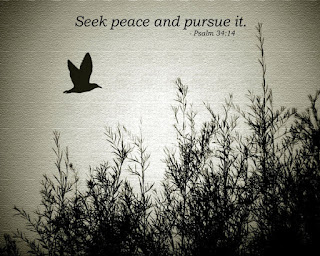 Pursue Peace,The Believing Woman: Scriptures for the Soul: Pursue Peace!