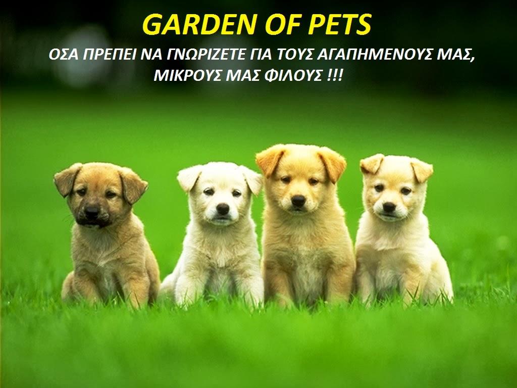 Garden Of Pets