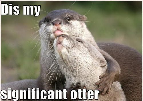 Dis My -  Significant Otter
