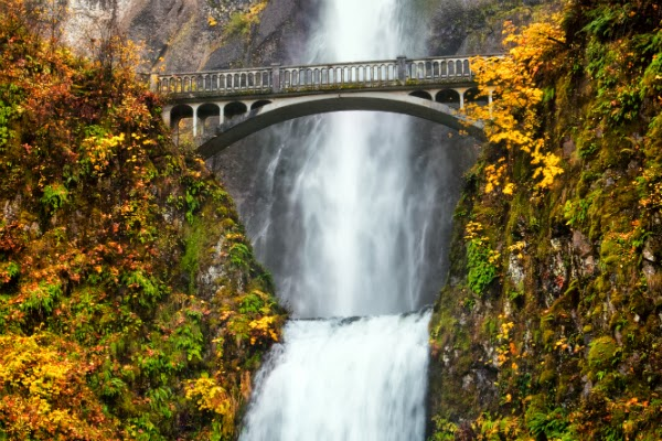 5 Autumn Things To Do In Portland Guardian Real Estate Services