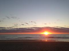 Wandering @Surfers Paradise, Gold Coast
